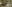 Choorakkodi Kalari Advertisement  [more on website...]