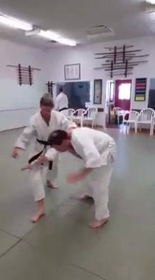 Godokan students increase training for upcoming Chida Shihan seminar. The seminar is open to all styles and everyone is ...